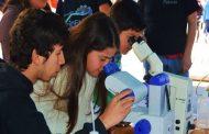 Cabildo celebrará la ciencia y la tecnología con una Feria Científica Escolar